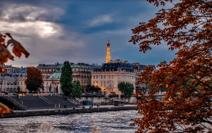 Why You Should Go to Paris in November